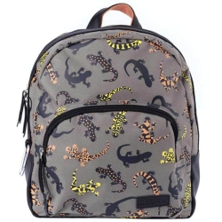 Zebra Trends Kids collectie